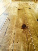 pine01.jpg