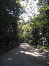 史跡糺の森