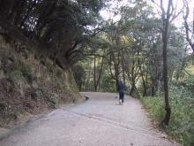 九州自然遊歩道