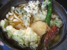 山菜天ぷらうどん