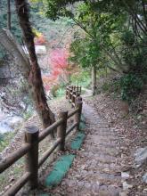 観音の滝への道