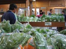 野菜がたっぷり