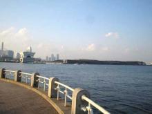 山下公園から見た大さん橋
