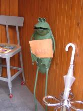 DURAMの看板カエル