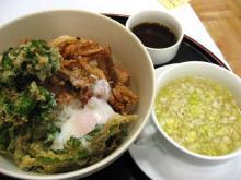 菜の花と桜海老のトロ玉天丼