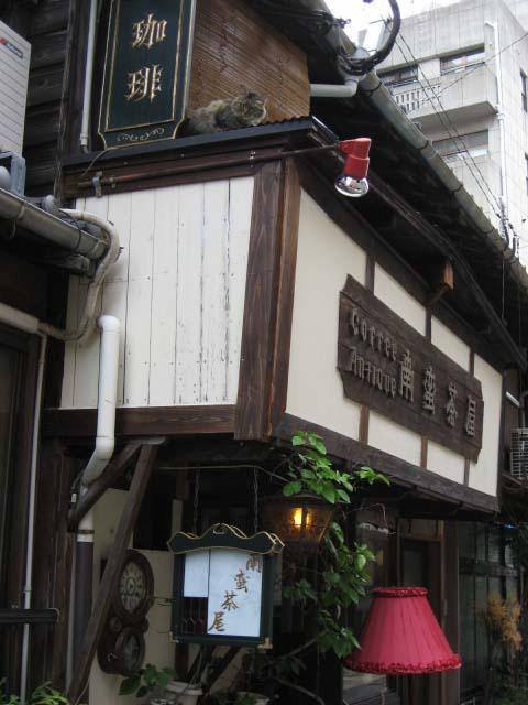 南蛮茶屋と猫